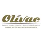 Olivae