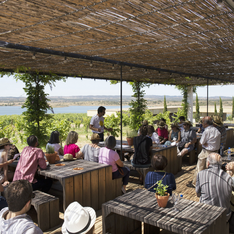 Workshop on organic agriculture practices and soils, with tasting of Esporão Colheita